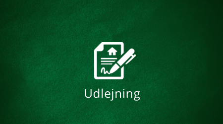 udlejning-lille